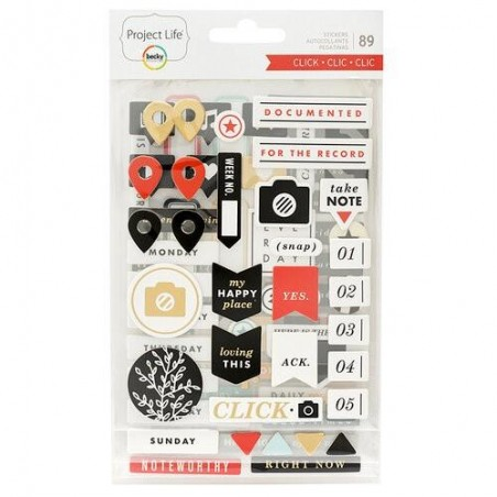 Becky Higgins - Project Life -Chipboard