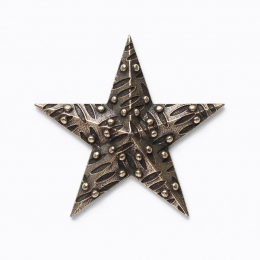 Gwiazda 1.1
