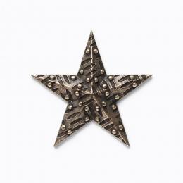 Gwiazda 1.2