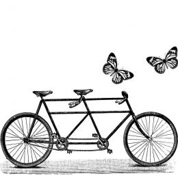 Stempel Rower Tandem