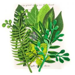 Papierowe Liście - Evergreen
